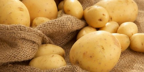 Вы будете удивлены, но этот овощ способен снизить риск развития рака