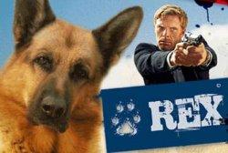 В Украине будут снимать телесериал «Комиссар Рекс»