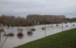 На Закарпатье паводок подтопил несколько сел