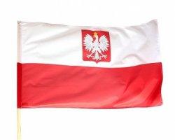 Українцям пропонують безкоштовно вивчати польську і німецьку мови онлайн