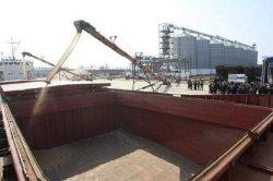 Американцы построят зерновой терминал в морпорту «Южный»