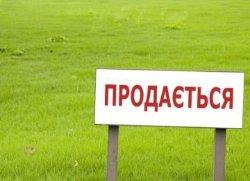 Правительство выставит на продажу 1 млн га земли