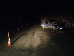 Хмельнитчина: пьяный водитель сбил двух пешеходов