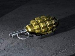 На Полтавщине женщина нашла в своем дворе гранату