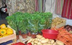 В Украине значительно выросли цены на овощи и фрукты