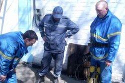 Днепропетровщина: в коллекторе обнаружен труп младенца