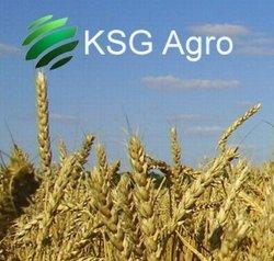 KSG Agro намерен реструктуризовать 20 млн.$ долгов
