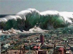 Землетрясение в Японии может вызвать цунами