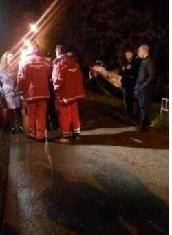 Во Львове перевернулся автомобиль с беременной женщиной