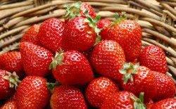 В Украине должна подешеветь клубника и малина