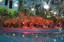 Смерть ребенка в столичном аквапарке: появились новые подробности