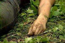 На обочине трассы на Львовщине обнаружено тело мужчины