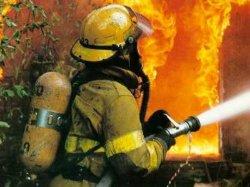 Шестилетний ребенок погиб в огне пожара на Киевщине