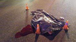 Кровавое ДТП в Киеве: Опель насмерть сбил пешехода