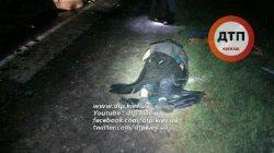 Смертельное ДТП под Киевом: фура раздавила грузовик