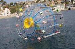 В США остановили мужчину, плывшего на Бермуды в водном колесе