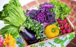 В Украине дорожают борщевой набор и тропические фрукты