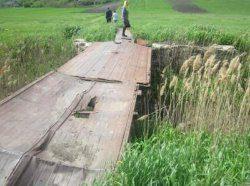 Одесчина: под мостом обнаружен изувеченный труп мужчины