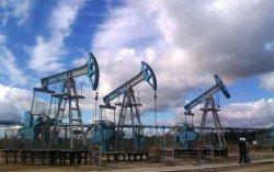 Цены на нефть снова опустились вниз