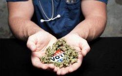 Германия планирует в 2017 году легализовать марихуану