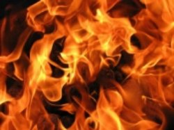 В Запорожской области загорелся легковой автомобиль
