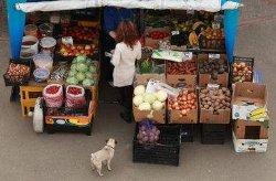 Украинцам рассказали, какие продукты подешевеют летом