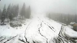 Аномальная весна: Закарпатье засыпало снегом
