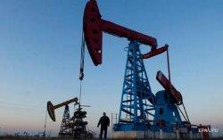Котировки на нефть резко упали