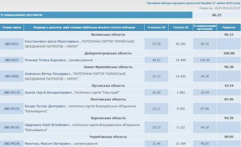 Довыборы в Раду: ЦИКу осталось обработать меньше 14% протоколов