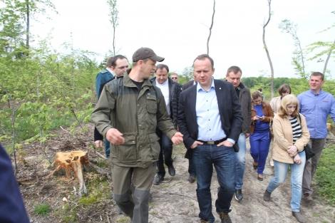 Семерак не выполнил обещание остановить вырубку карпатских лесов  -  Деревянко