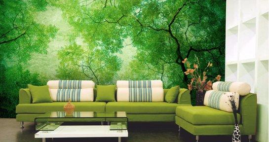 Фотообои для дома и офиса: природа и пейзажи