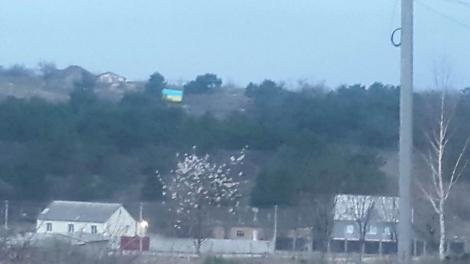 В оккупированном Симферополе над Ак-Мечетью подняли украинский флаг (фото)