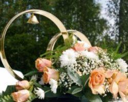 Загородный комплекс «Царёвка» —  проведение свадьбы в Киеве по демократичным ценам
