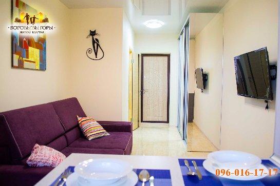 Новые квартиры на Воробьевых горах
