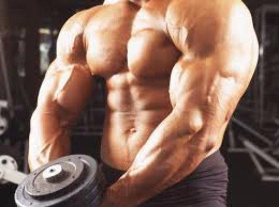 Качественное и эффективное спортпитание в Украине: жиросжигатели и стероиды