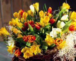 Доставка цветов в Харькове – дарите букеты и получайте эмоции