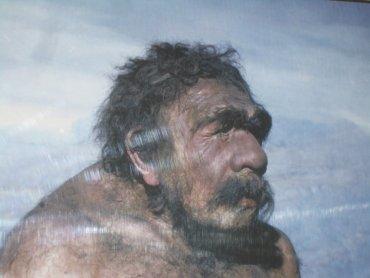Раскрыта тайна происхождения денисовского человека