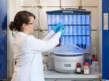 Ученые работают над созданием самоуничтожающихся материалов