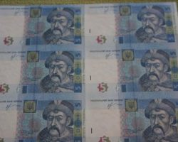 Китаец пытался вывезти из РФ листы с неразрезанными на купюры гривнами
