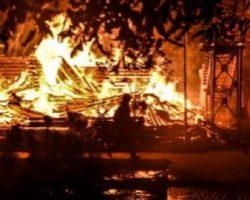 Виновной в пожаре в лагере «Виктория» сделали молодую воспитательницу