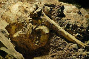 Скелет маленького мальчика помог ученым выяснить тайну происхождения человека