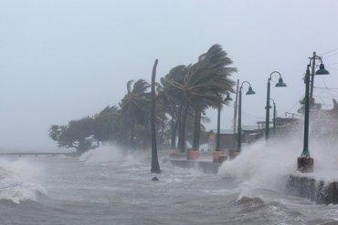 Знаменитости собрали более $14 млн. для пострадавших от ураганов в США
