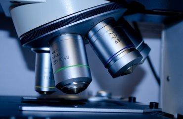 Бактерии-«киборги» увеличили фотосинтез в 40 раз