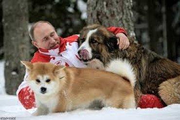 Владимир Путин и его твари