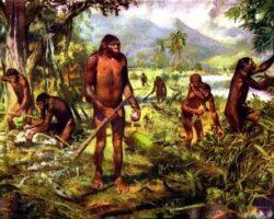 Предков человека заставило покинуть Африку похолодание
