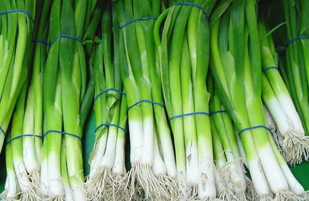 Лучший зеленый лук