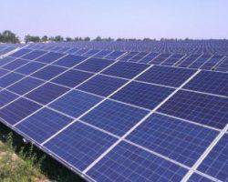 В Украине на месте леса появится электростанция