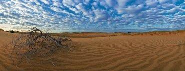 В Укргидрометцентре заявили, что Украина вскоре может превратиться в пустыню