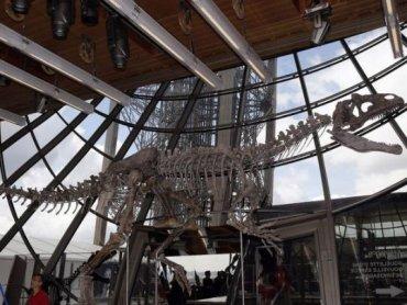 В Париже на аукционе скелет неизвестного динозавра продали за 2 млн евро