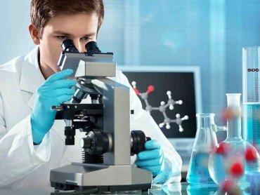 Ученые начали создавать каталог ДНК всех живых существ